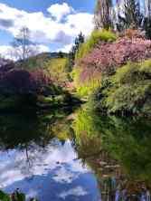Sunken Garden Pond