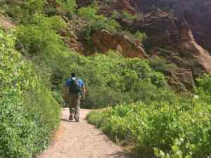KC hiking along the start of the Angel's Landing Trail