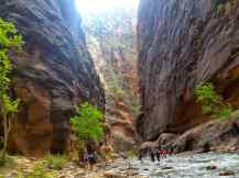 A view of the Narrows hike.