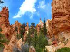 Bryce Canyon along the Navajo Trail Loop