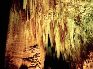 Stalagmites at the Carlsbad Caverns