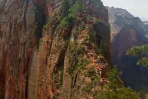 A zoomed in picture of the rock scramble on Angel's Landing
