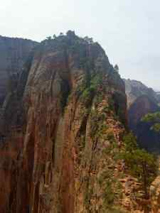 The last half mile of Angel's Landing is a rock scramble with cables