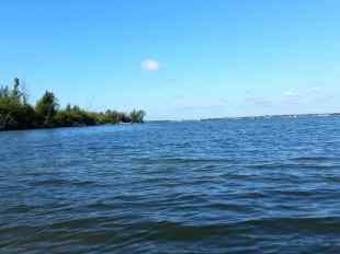 On the Indian River looking for Manatees