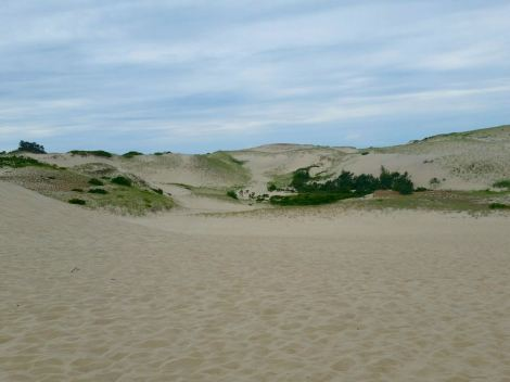 The cape had some awesome sand dunes