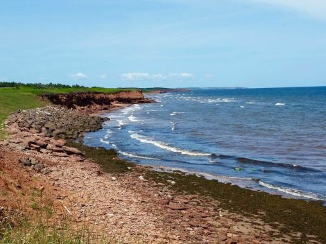 The cobbly beach side of PEI